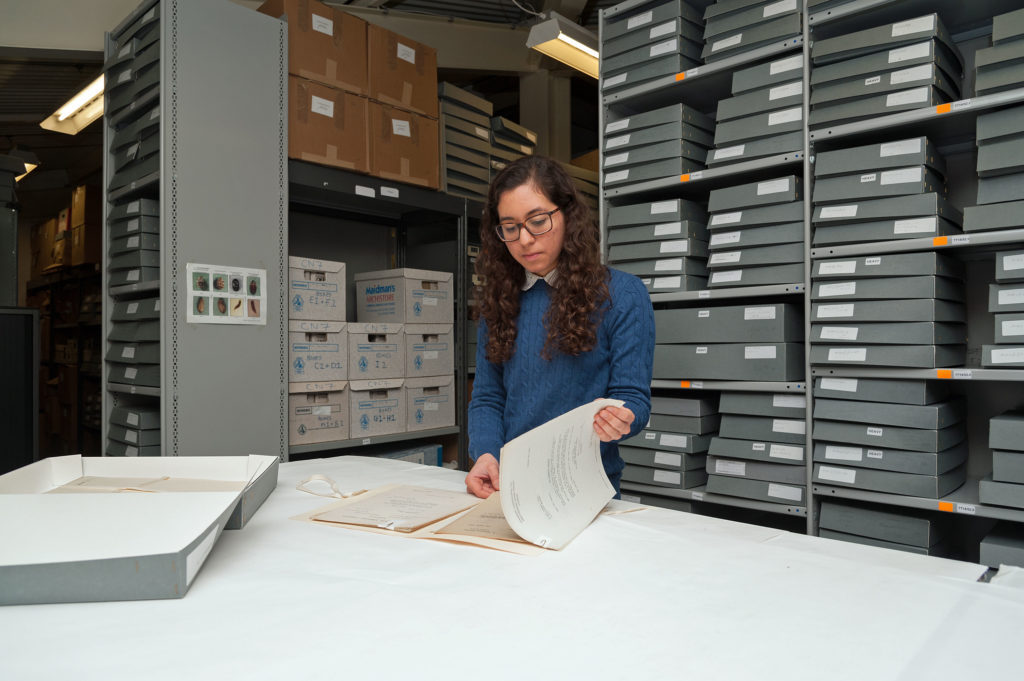 A museum archivist reading a historic document in the National Motor Museum Trust's archive store