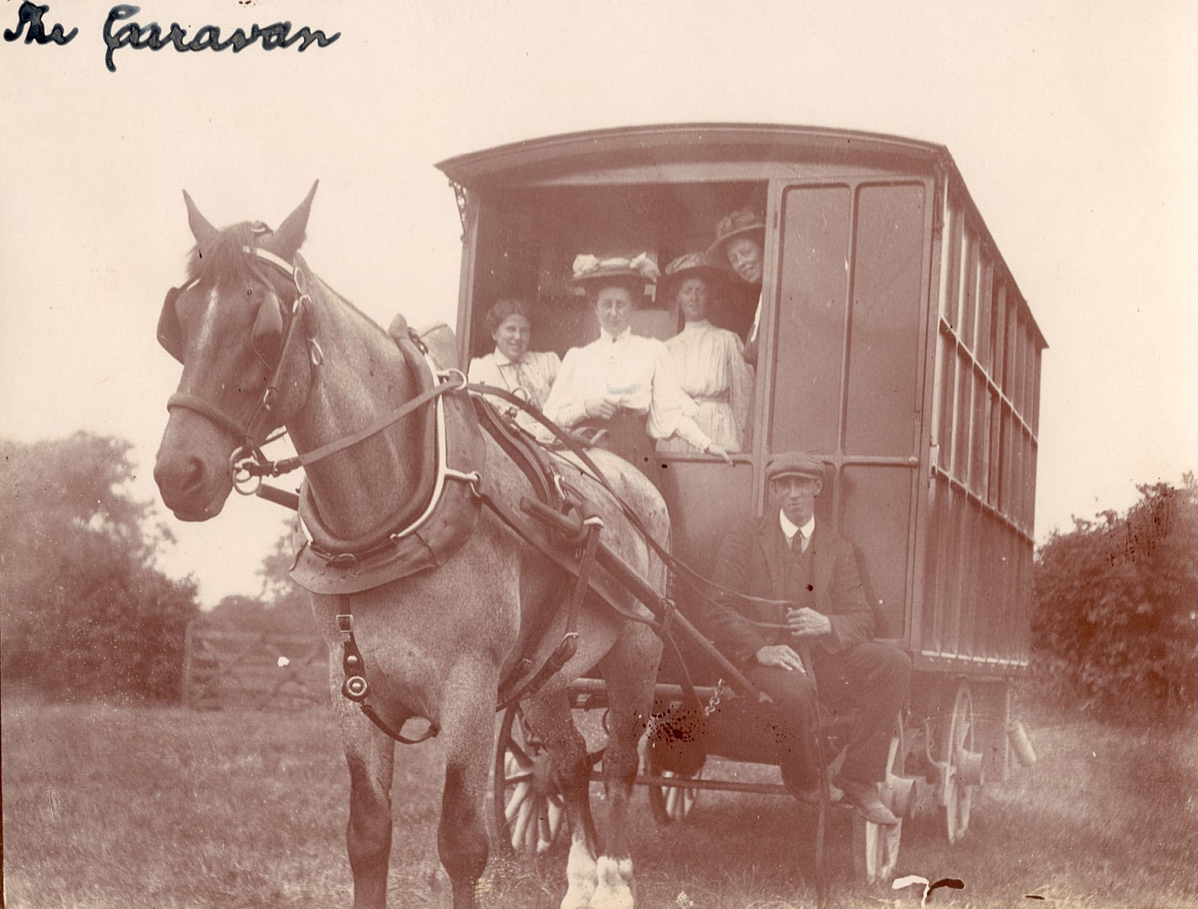 Women seated in the cab of a horse-drawn caravan.