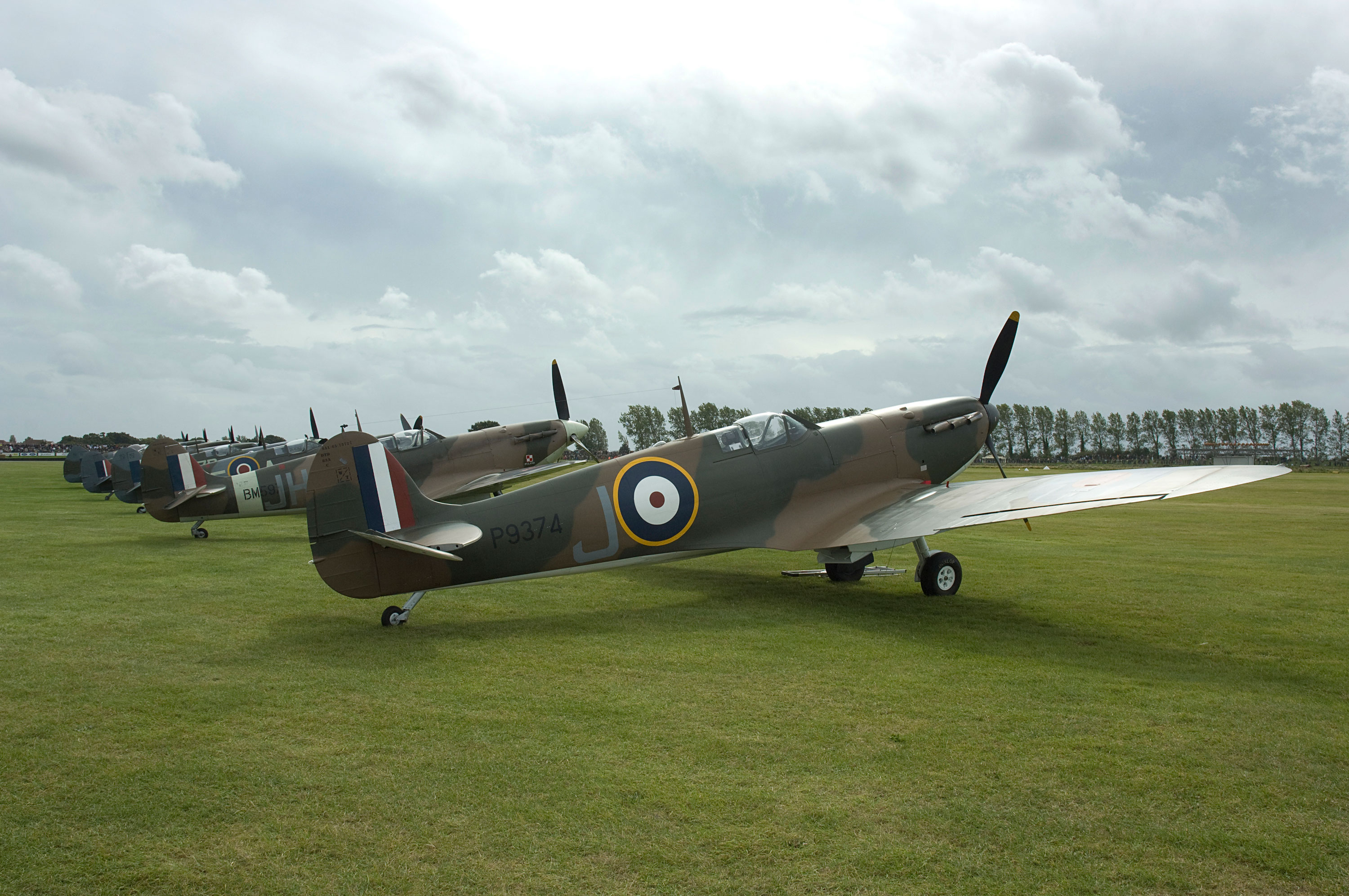 Line of Spitfires in field