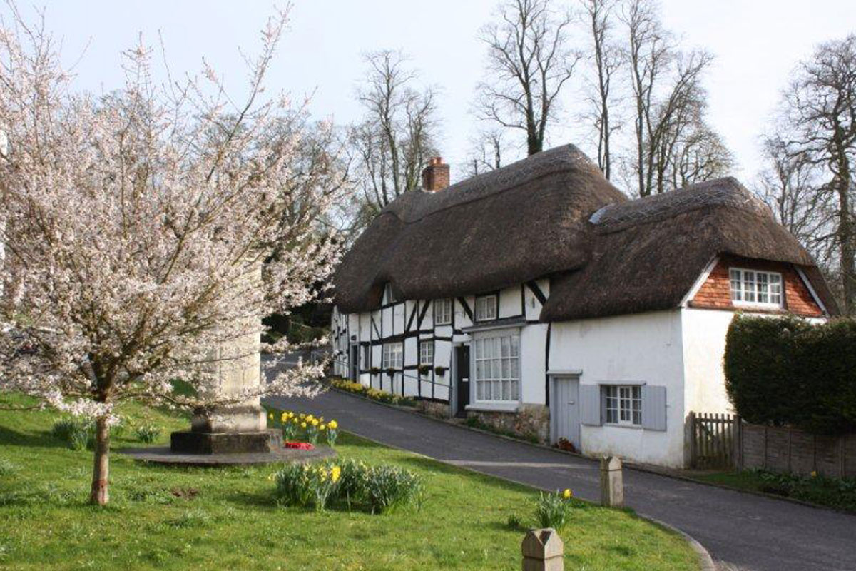 A row of thatched cottages alongside a road